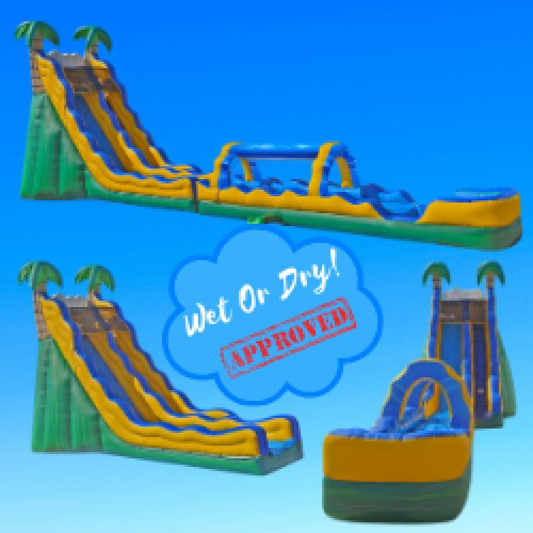 24′ Palm Tree Water Slide, Bouncing On Air LLC | Buffalo, New York